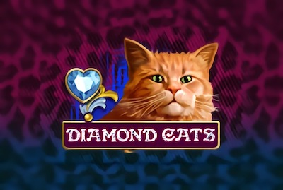 Diamond Cats Slot Machine: Play Online and Review
