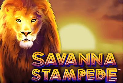 Savanna Stampede Slot Machine: Play Online and Review