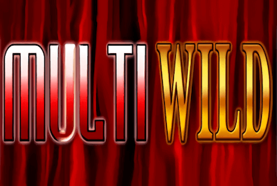 Multi Wild Slot Machine: Play Online and Review