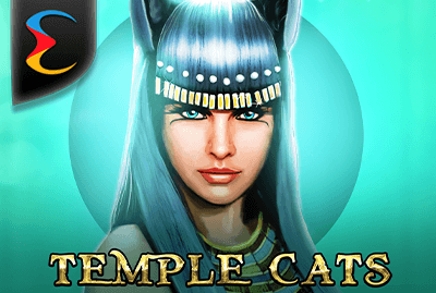 Temple Cats Slot Machine: Play Online and Review