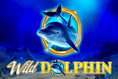 Wild Dolphin Slot Machine: Play Online and Review