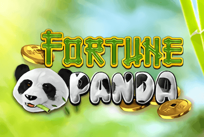 Fortune Panda Slot Machine: Play Online and Review