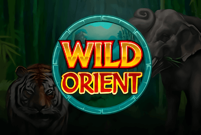 Wild Orient Slot Machine: Play Online and Review
