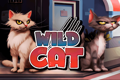 Wild Cat Slot Machine: Play Online and Review
